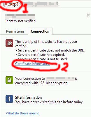 Click on the invalid https indicator then click on Certificate information