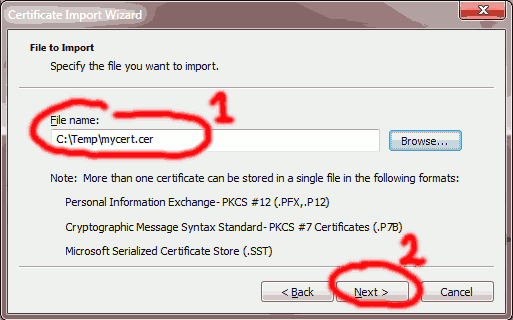 Enter temporary certificate file name and select Next